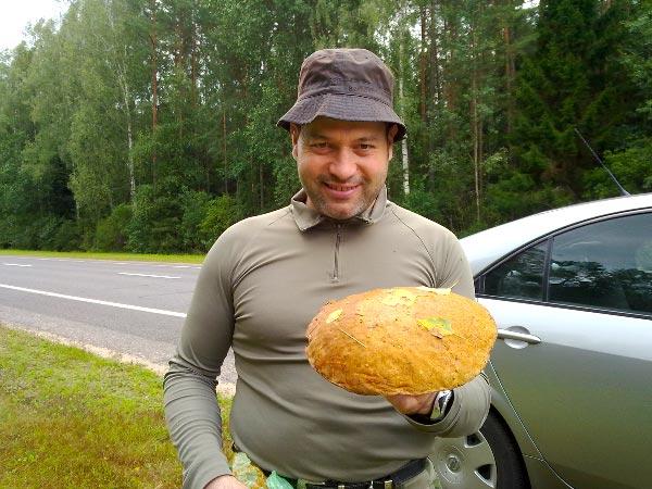 Cueillette de champignons par Patrick Pasello de votre boucherie à l'Union